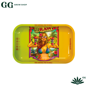 Raw Bandeja Brazil Small - Garden Glory Grow Shop
