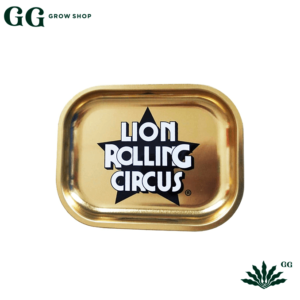 Lion Bandeja Gold S - Garden Glory Grow Shop