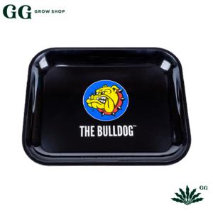 Bulldog Bandeja Mediana - Garden Glory Grow Shop