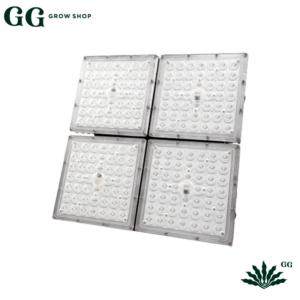 Insativa 4 Led Samsung 150×150 - Garden Glory Grow Shop